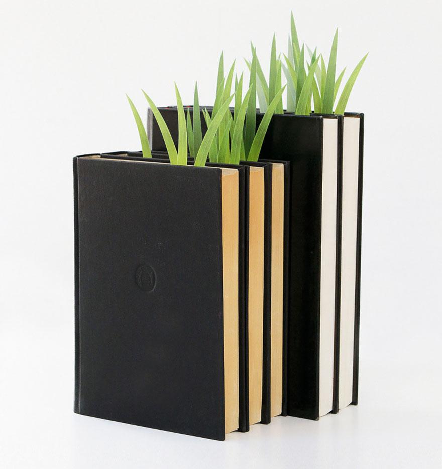 Ideas ecológicas (14)