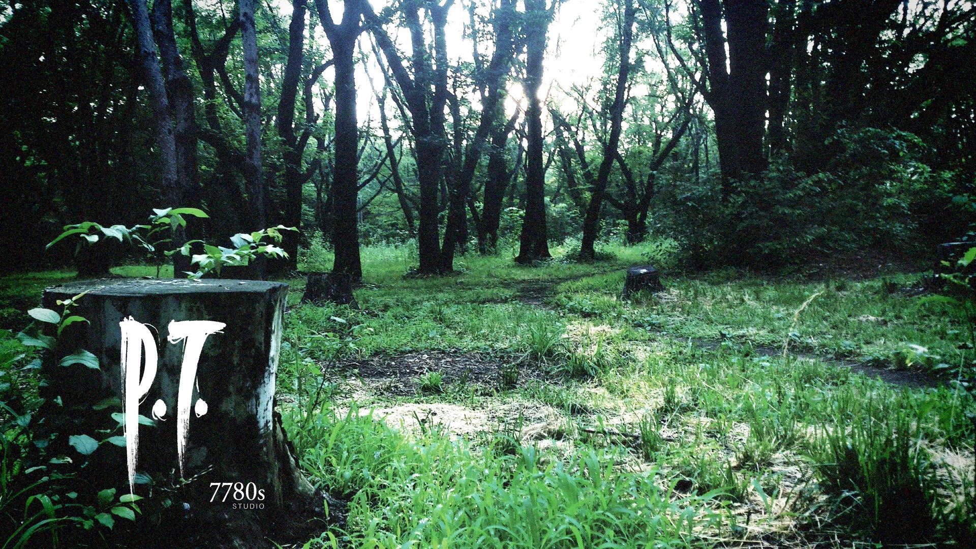 P.T. Silent Hills (10)