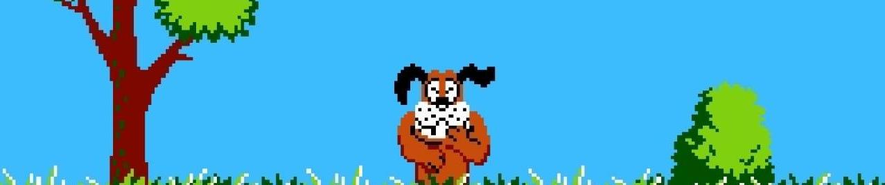 Duck Hunt (3)