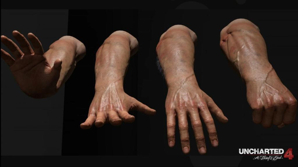 testout anatomia humana descargar minecraft