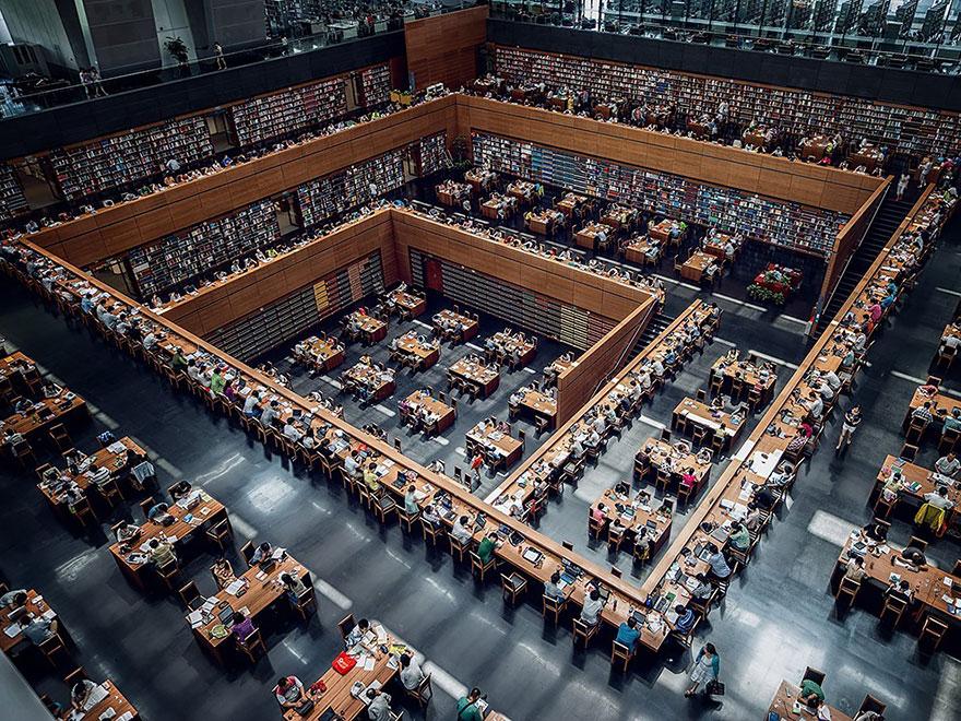 Bibliotecas (21)
