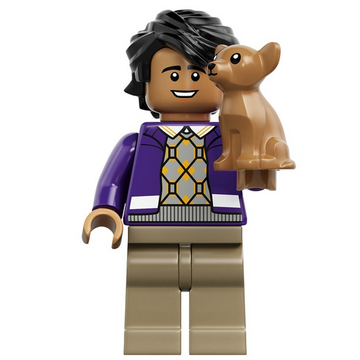Big Bang Theory LEGO (3)