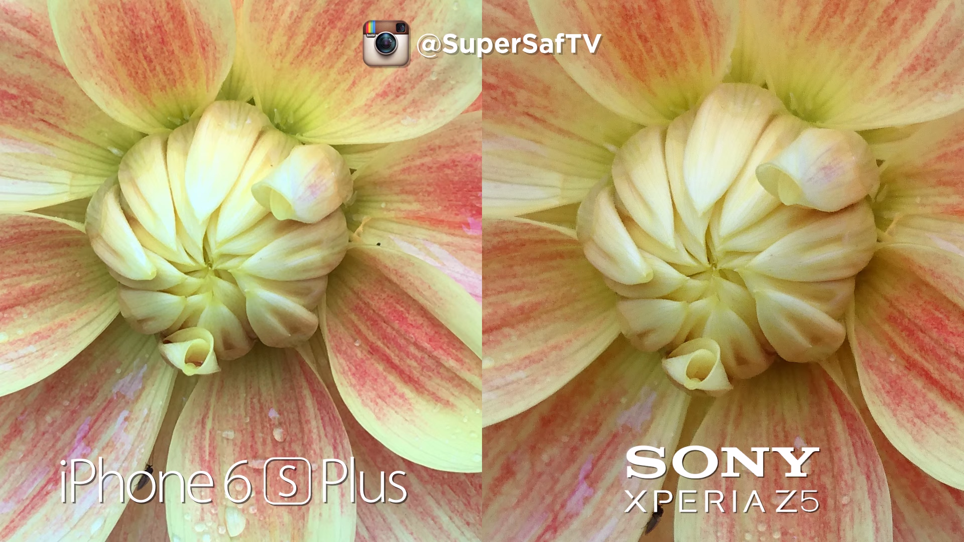 Xperia z5 vs iPhone 6s plus (3)