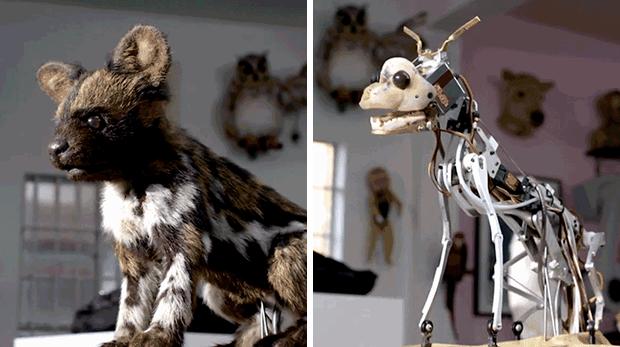 animales robot