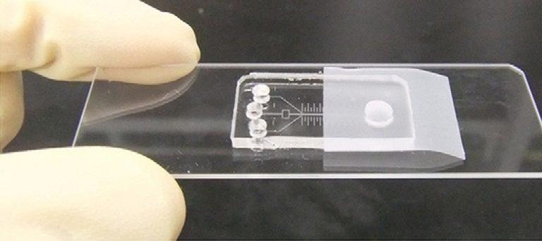 chip-puede-detectar-enfermedades-4-768×342