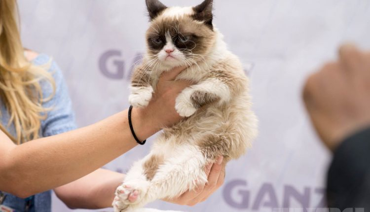 grumpy-cat-TF2014-stock2_2040.0