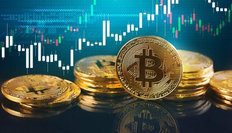 mercado-criptomonedas-bitcoin-estudio