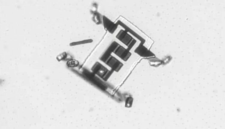 Microbots-destacada